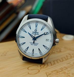 Omega Seamaster Aqua Terra Master Good Planet Co-Axial Wristwatch Ref. 231.92.39.21.04.001