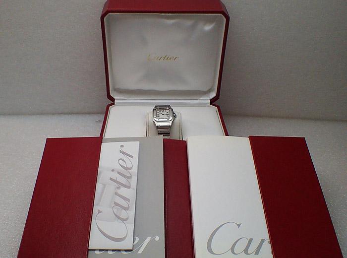 Santos de Cartier Galbee Quartz Ref. W20056D6